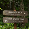 Hamilton Mountain, Washington : Hamilton Mountain rises from the Columbia River about 50 miles east of Vancouver, Washington.